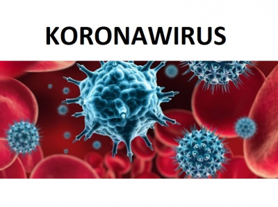 koronawirus2.jpg